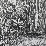 In the garden - ink & charcoal - 11 x 8 - 2014 - $120