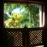 Window at the Crusoe cottage
