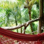 Hammock - best place ever