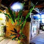 Art gallery and kitchen at Indigo